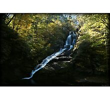 Dingmans Autumn Afternoon Photographic Print