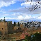 View from Alhambra in Autumn by Debra Kurs