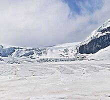 Athabasca Glacier - Panorama by Alex Preiss
