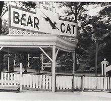 """The Bear Cat"" by Gail Jones"