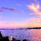 Sunset In Pink & Purple by Nancy Richard