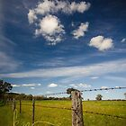 Fenced in by Kat36