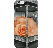 Encounter with the Marvelous iPhone Case/Skin