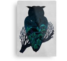 Owlscape Metal Print