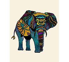 Elephant of Namibia Photographic Print