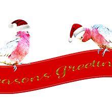 Seasons Greetings from a pair of Galahs by Deborah McGrath