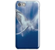 Whale Clapping iPhone Case/Skin