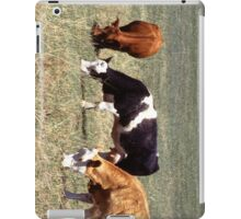 Cattle Farm iPad Case/Skin
