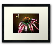 The Bee and the Flower  Framed Print