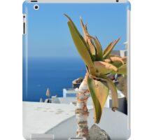 Cacti in Santorini, Greece iPad Case/Skin