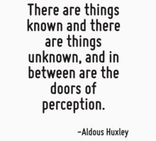 There are things known and there are things unknown, and in between are the doors of perception. by Quotr