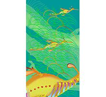 Weedy sea dragon Photographic Print