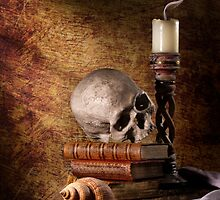 Vanitas with Skull, Shell & Candle by Jon Wild