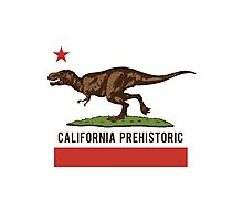 California Prehistoric Photographic Print