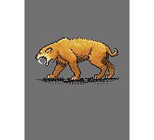 Prehistoric Pixels - Smiledon  Photographic Print