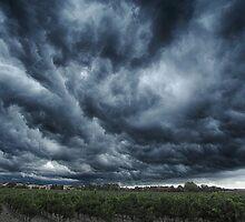 Aprés la vendage le deluge. by Paul Pasco