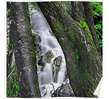 Waterfall in Cradle Mountain Poster