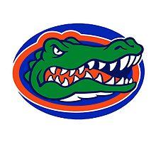 Florida Gators by swsw