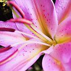 bright lily by xxnatbxx
