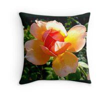 Peach Rose Budding Throw Pillow