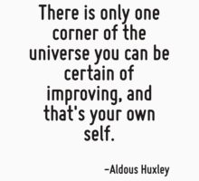 There is only one corner of the universe you can be certain of improving, and that's your own self. by Quotr