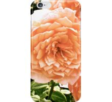Antique Rose Garden iPhone Case/Skin