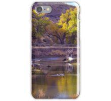 Truckee River  iPhone Case/Skin