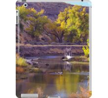 Truckee River  iPad Case/Skin