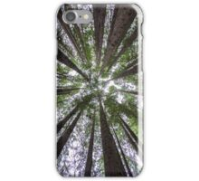 Majestic Redwoods iPhone Case/Skin
