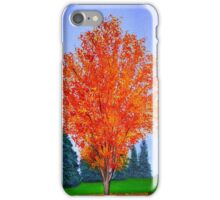 Fall Tree in ND iPhone Case/Skin