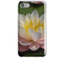 Wet n Wild iPhone Case/Skin