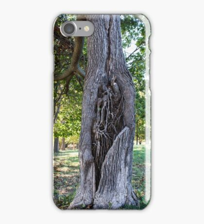 The Trees Have Hearts iPhone Case/Skin