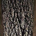 Wood light shadow by John Dalkin