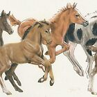 Frolicking Foals by BarbBarcikKeith