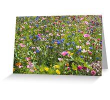 Summer Flowers Greeting Card