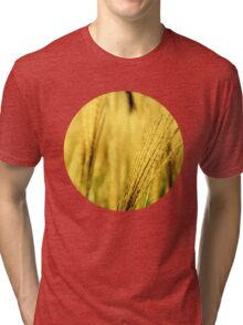 Golden Tall Grass Tri-blend T-Shirt