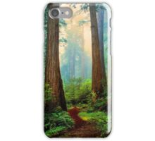 REDWOOD  FOREST iPhone Case/Skin