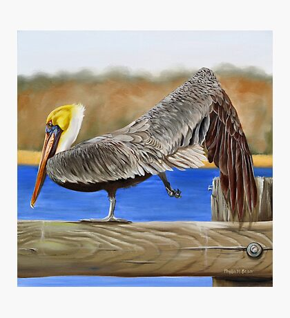 What Pelicans Do (2) Photographic Print