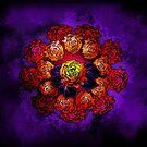 Roses II  by jimiyo