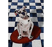 Boxer Named Briefs Photographic Print
