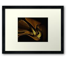 Curvilinear Project No. 303 ( From Beyond ) Framed Print