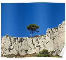 A lonely tree on the rocks Poster