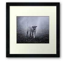 Dogs with game face on .32 Framed Print