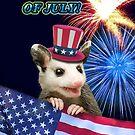 Fourth of July Opossum by jkartlife