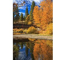 Bridge Over The Susan River Photographic Print