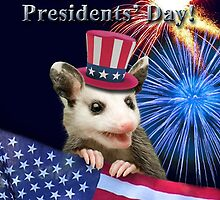 Presidents Day Possum by jkartlife