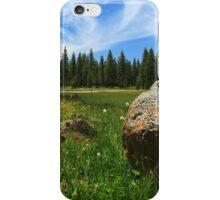 Different Boulder Same Springtime iPhone Case/Skin