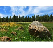 Different Boulder Same Springtime Photographic Print