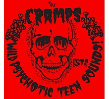 The Cramps Psychotic Teen Sounds Photographic Print