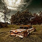 Abandoned Edsel by mal-photography